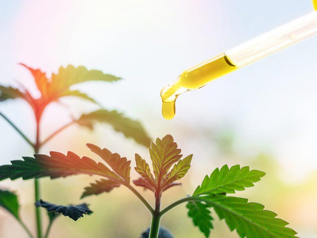 THC Edible Oil Drops